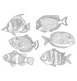 underwater tropical fishes coloring page set vector image vector image