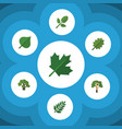 flat icon natural set of alder hickory acacia vector image vector image