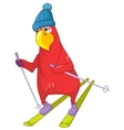 Funny Parrot Skiing vector image vector image