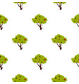 tall tree with fruits pattern flat vector image vector image