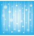 The hanging snowflakes vector image vector image