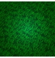 Green grass background with darkened edges vector image