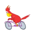 Funny Parrot Biker vector image vector image