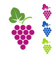 grape sign logo wine production of wines vector image vector image