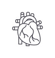 human heart line icon concept human heart vector image vector image