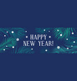 new year banner with fir branches and snowflakes vector image vector image