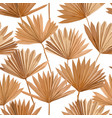 tropical dry palm leaves seamless pattern vector image vector image