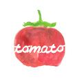 Watercolor pear tomato vector image