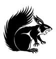 black squirrel sign vector image vector image