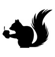 cute squirrel eats nut nature wildlife image vector image vector image