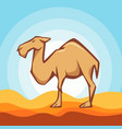 flat style of camel good for logo vector image
