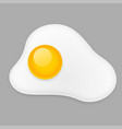 fried egg omelette isolated on gray background vector image