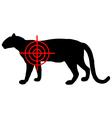 Leopard crosslines vector image vector image