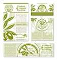 olive oil and fruit sketch business template set vector image vector image