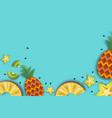 pineappple carambola kiwi ananas and starfruit vector image vector image