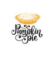 pumpkin pie hand lettering vector image vector image
