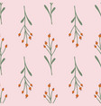 rose hip seamless pattern vector image