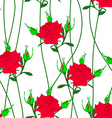 seamless background with flower roses vector image vector image