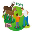 wild deers isometric background vector image vector image