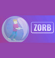zorb concept banner cartoon style vector image vector image