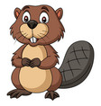 cartoon happy beaver on white background vector image vector image