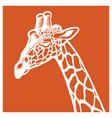 giraffe portrait vector image vector image
