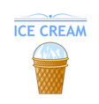 ice cream in a waffle cup vector image