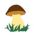 Image of porcini isolated on white background vector image