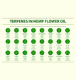 terpenes in hemp flower oil with structural vector image vector image