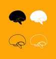 brain set black and white icon vector image