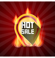 Hot Sale Yellow Label in Flames Fire on Retro Red vector image