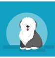 sitting funny dog Old English vector image