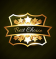 best choice label design with stars burst vector image vector image