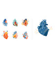 collection anatomical heart modern print design vector image vector image