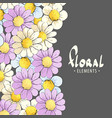 delicate daisies on a dark background vector image vector image