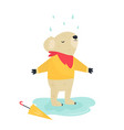funny cute koala staying under rain vector image vector image
