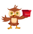 owl with sale box on white background vector image vector image