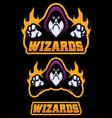 wizard cartoon mascot vector image vector image