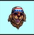 american animal funny dog vector image vector image