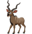 cartoon kudu antelope vector image