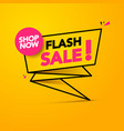 flash sale shop now lighting banner design vector image vector image
