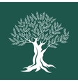 Olive tree silhouette on green background vector image