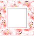 pink lily flower banner card vector image vector image