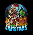 pug dog wearing santa claus hat in gift vector image vector image
