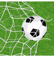 Soccer Ball in Net vector image