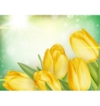 Tulips growing on green bokeh EPS 10 vector image