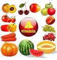 vitamin a herbal products vector image vector image