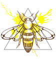 Zentangle stylized Bee in triangle frame with vector image