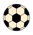 black and white soccer ball graphic vector image