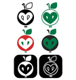 apple core heart vector image